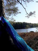 GREENFULNESS – LUONTOLÄSNÄOLO